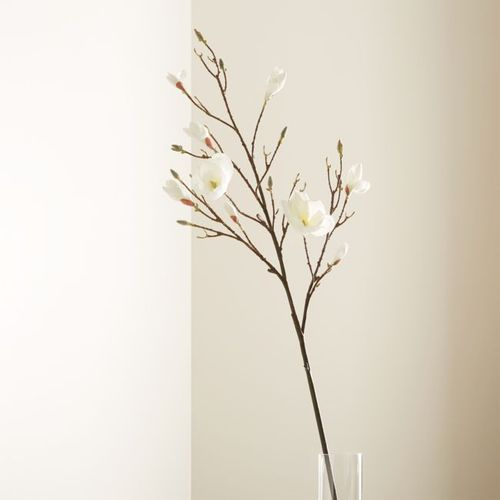 Rama-Decorativa-Magnolia-Crate-and-Barrel